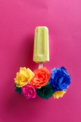 menu-paletas-mexicanas01493