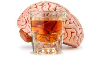 Álcool é prejudicial ao cérebro em qualquer quantidade, diz estudo