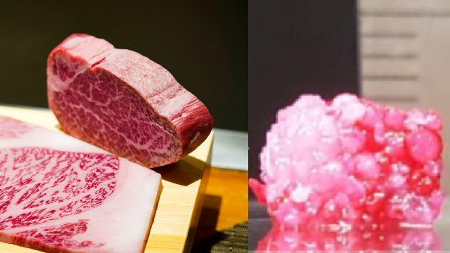Wagyu de laboratório: Carne mais cara do mundo impressa em 3D é carne?