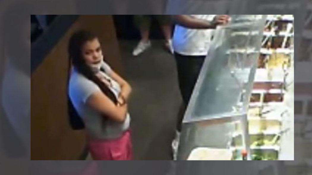 Mulher enfurecida porque restaurante está fechando aponta arma para funcionário (Foto: Reprodução/Polícia da Filadélfia)